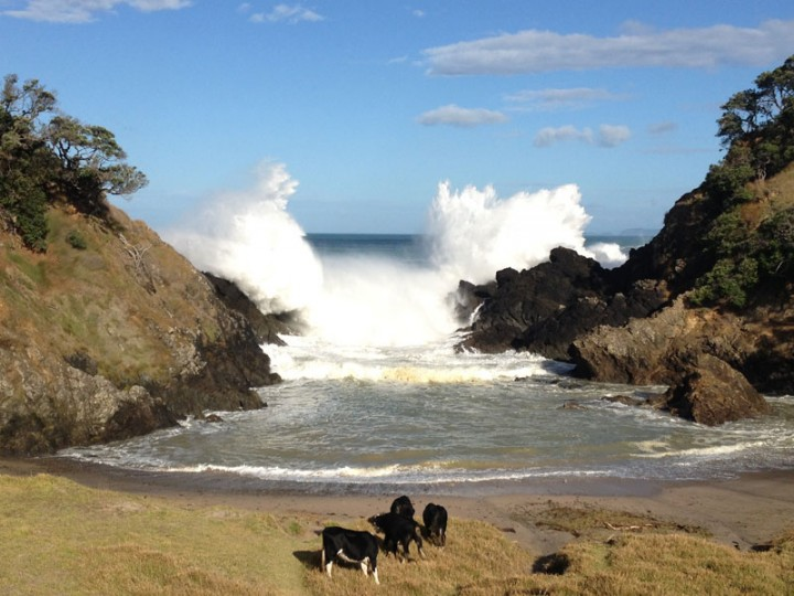 Cyclone Pam swell at The Gap